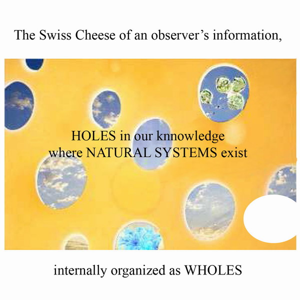 Swiss cheese of knowledge
